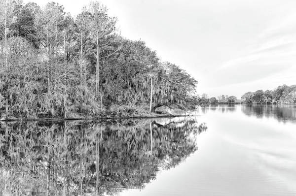 Photograph - The Point At Coosaw Plantation by Scott Hansen