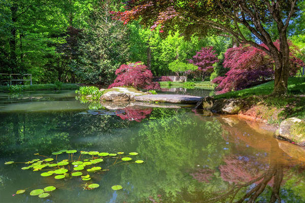 Photograph - The Pond At The Garden by Debra and Dave Vanderlaan