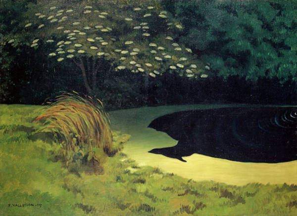 Wall Art - Painting - The Pond, Honfleur by Felix Vallotton