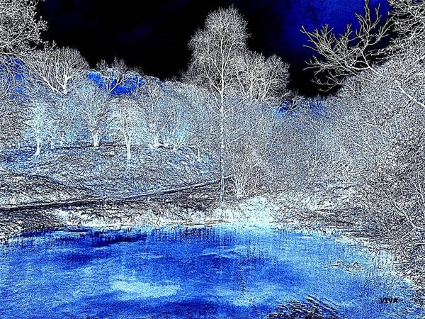Photograph - The  Pond In  Winter  -  Edit20-contest by VIVA Anderson
