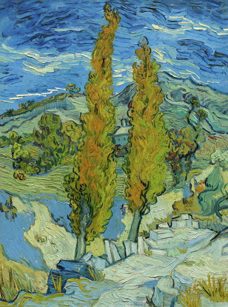 Almond Painting - The Poplars At Saint-remy, 1889 by Vincent van Gogh