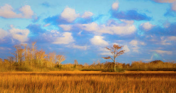 Photograph - The Power Of Gold Painting by Debra and Dave Vanderlaan