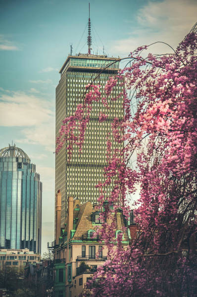 Photograph - The Prudential Center And Cherry Blossoms by Joann Vitali