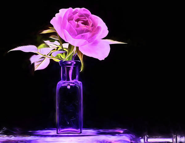 Photograph - The Purple Rose Still Life by JC Findley