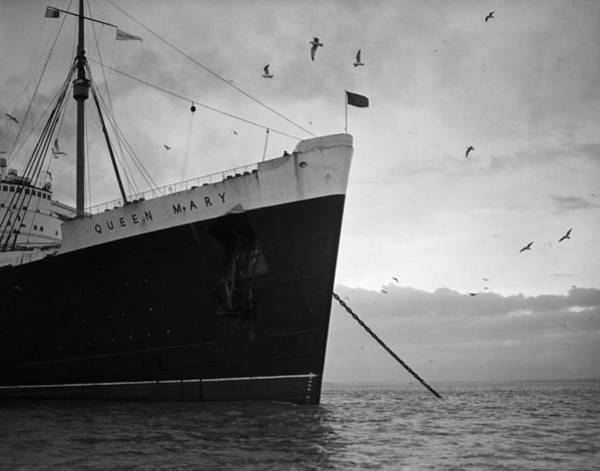 Queen Photograph - The Queen Mary by Express