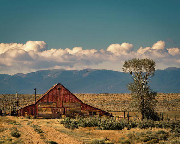 Wall Art - Photograph - The Red Barn by Medicine Tree Studios