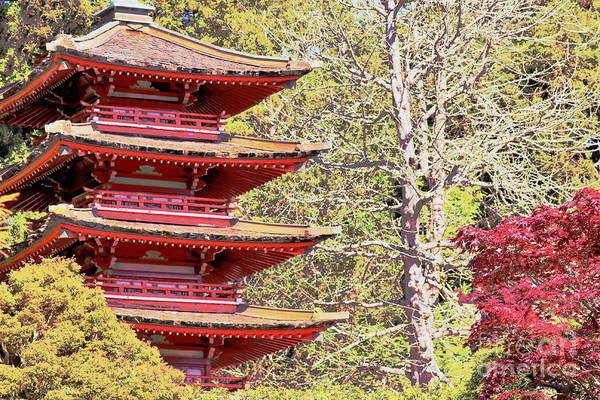 Wall Art - Photograph - The Red Pagoda by Diann Fisher
