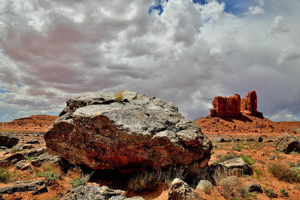 Photograph - The Red Rock Desert Of Utah Along Highway 191 by Ray Mathis