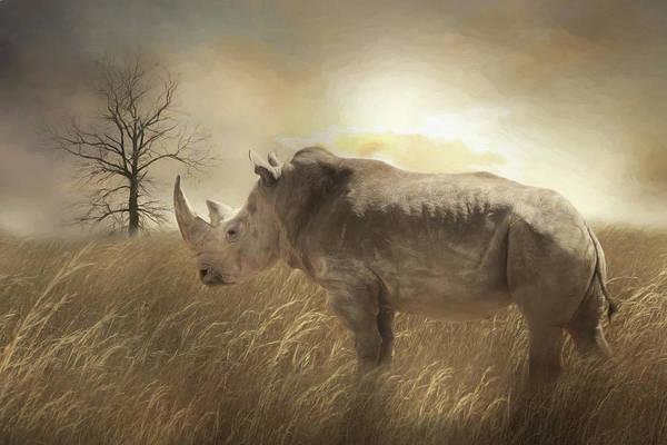 Wall Art - Photograph - The Rhinoceros by Lori Deiter