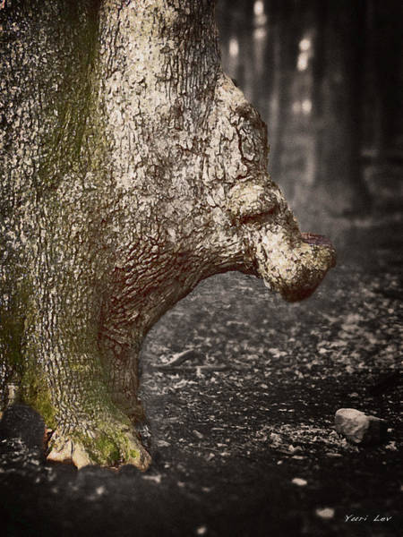 Mixed Media - The Rhinoceros Tree by Yuri Lev