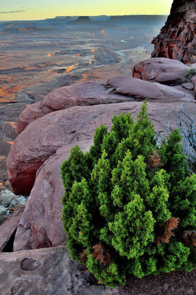 Photograph - The Rim Of Green River Overlook In Canyonlands by Ray Mathis
