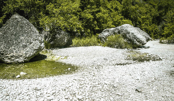 Lost River State Park Wall Art - Photograph -  The River Was Dry by Debra Martz