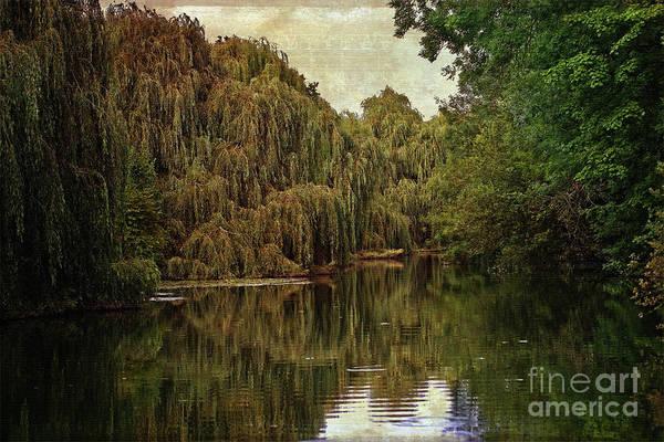 Digital Art - The River's Edge by Liz Alderdice