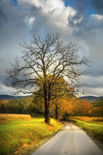 Photograph - The Road Into Autumn by Debra and Dave Vanderlaan