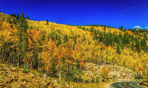 Photograph - The Road To Autumn by Jon Burch Photography