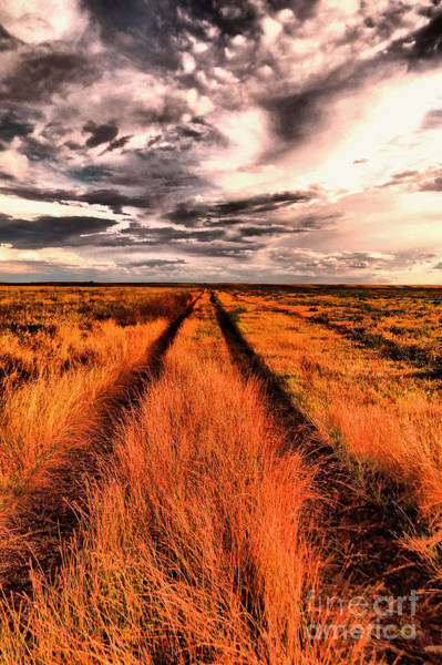 Wall Art - Photograph - The Road To Somewhere  by Jeff Swan