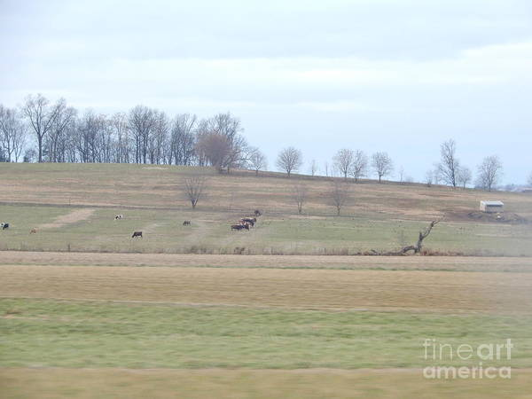 Photograph - The Rolling Hills Of Lancaster County by Christine Clark