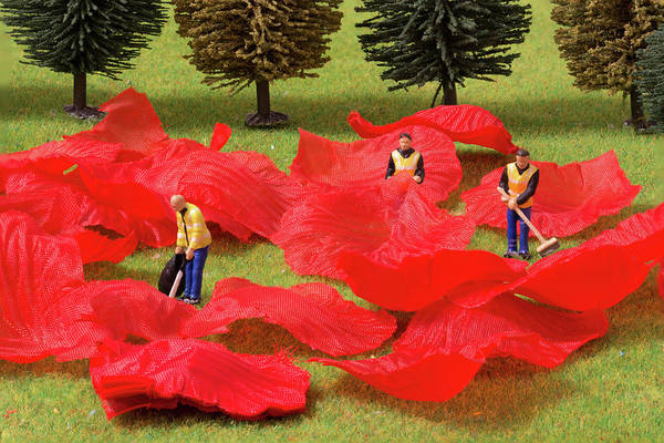 Photograph - The Rose Petal Collectors 2 by Steve Purnell