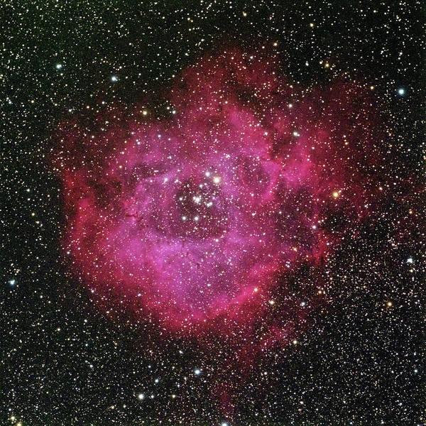 Photograph - The Rosette Nebula by A. V. Ley