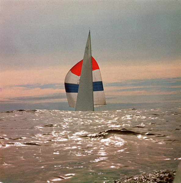 Freedom Photograph - The Sailboat Nefertiti Competing In The by George Silk