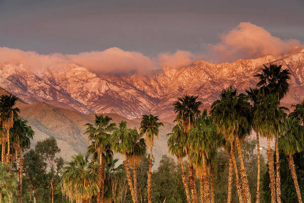 Scenic Photograph - The San Jacinto And Santa Rosa Mountain by Danita Delimont