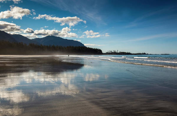 Vancouver Island Photograph - The Sandy Beach At Rugged Point Marine by Debra Brash / Design Pics