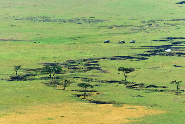 Savannah Photograph - The Savannah, Masai Mara National by Nico Tondini