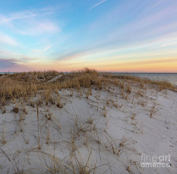 Photograph - The Sea Is The Place To Be by Michelle Constantine