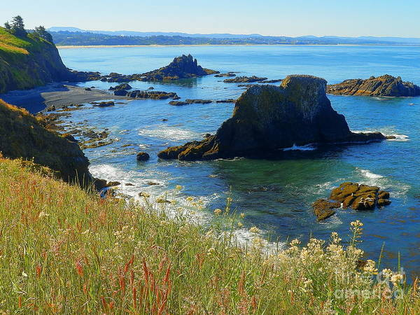 Wall Art - Photograph - The Sea Of Wonders Oregon Pacific Ocean Beaches by Art Sandi