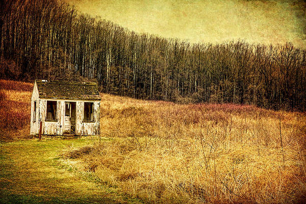 Photograph - The Shack by Reynaldo Williams