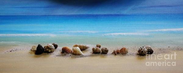 Wall Art - Mixed Media - The Shells On The Shore by Mesa Teresita