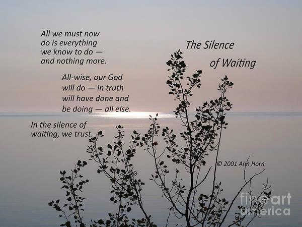 Photograph - The Silence Of Waiting by Ann Horn