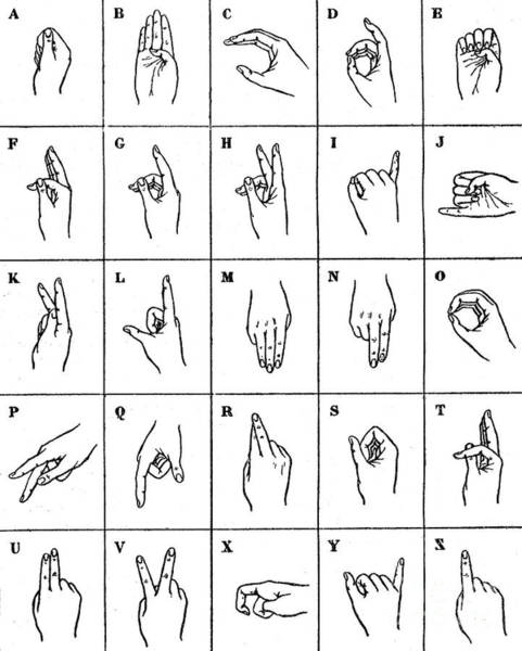 Wall Art - Drawing - The Single Handed Alphabet by French School