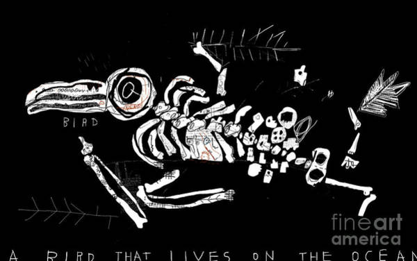 21st Wall Art - Digital Art - The Skeleton Of A Bird Which Ate by Dmitriip
