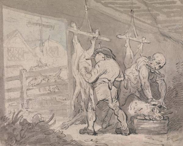 Drawing - The Slaughterhouse by Thomas Rowlandson