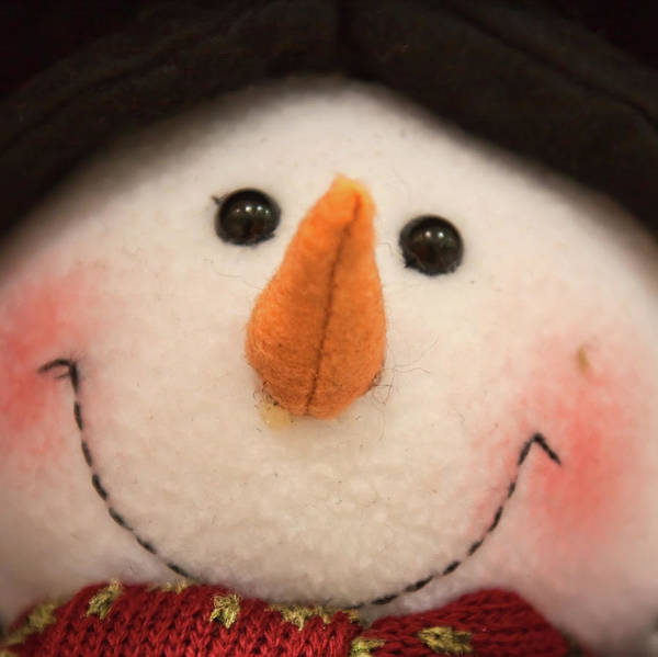 Photograph - The Smiley Snowman Toy by Tatiana Travelways
