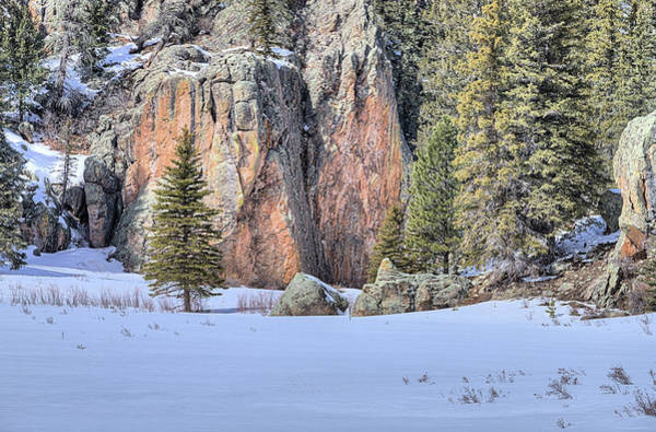 Photograph - The Snowy Meadow by JC Findley