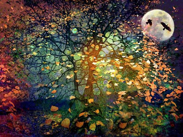 Digital Art - The Soft Shoulder Of The Moon by Tara Turner