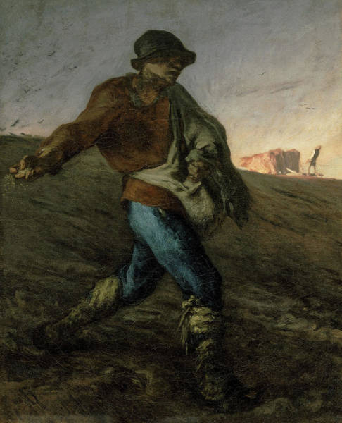 Wall Art - Painting - The Sower, 1850 by Jean-Francois Millet