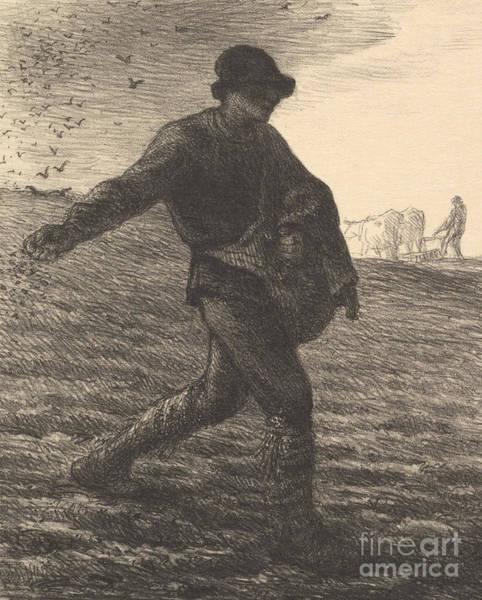 Wall Art - Drawing - The Sower, 1851  by Jean Francois Millet