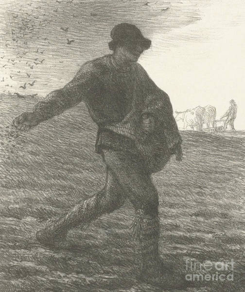 Spreading Wall Art - Drawing - The Sower, 1851 Lithograph by Jean Francois Millet