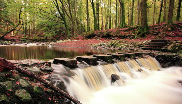 Newcastle Upon Tyne Photograph - The Stepping Stones - Tollymore by Stephen Wallace Photography