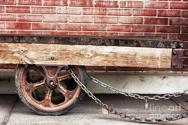 Photograph - The Struggle by Natural Abstract Photography