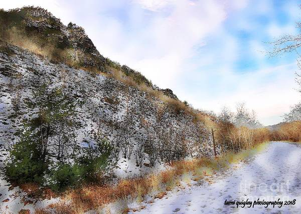 Photograph - The Sugared Trail  by Tami Quigley