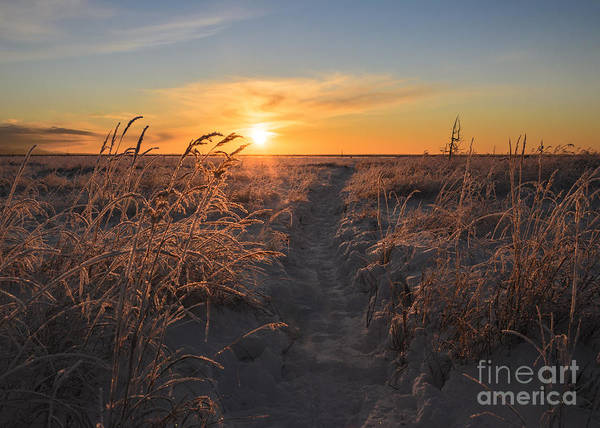 Refuge Wall Art - Photograph - The Sun Sets In The Anchorage Coastal by Susan R. Serna
