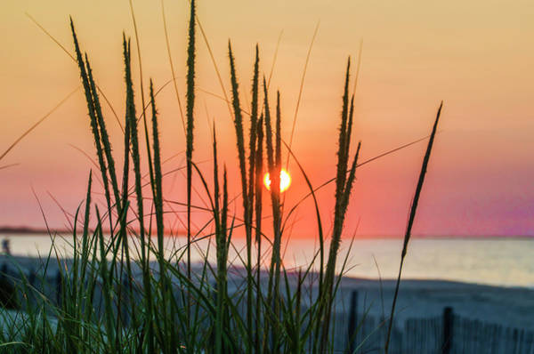 Wall Art - Photograph - The Sunrise And The Tall Grass At Wildwood New Jersey by Bill Cannon
