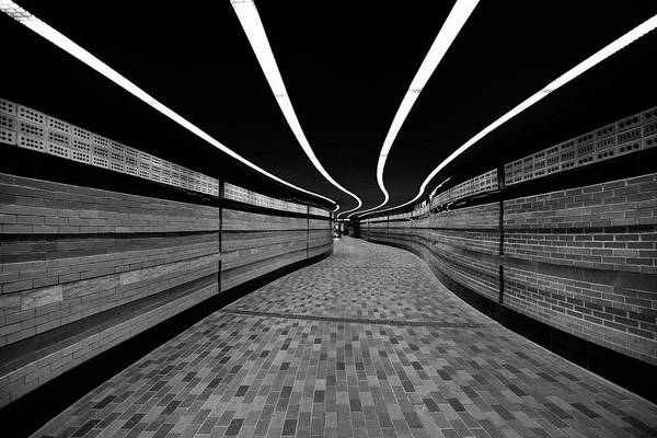 Photograph - The Symphony Of Lines by Roland Shainidze Photogaphy