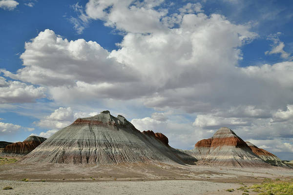 Photograph - The Teepees Of Petrified Forest Np by Ray Mathis