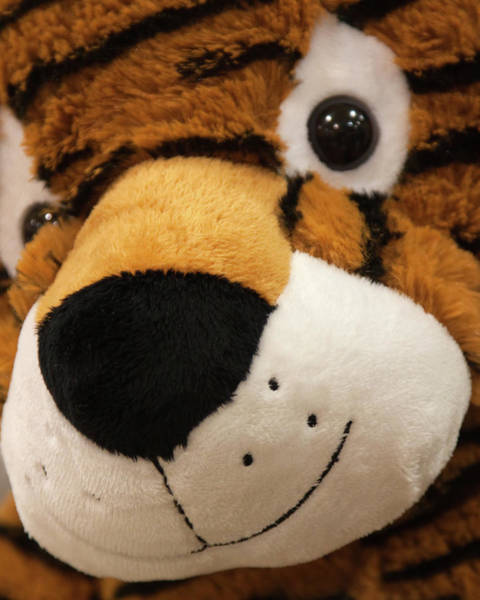 Photograph - The Tiger Toy by Tatiana Travelways