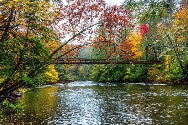 Wall Art - Photograph - The Toccoa River Hanging Bridge by Debra and Dave Vanderlaan